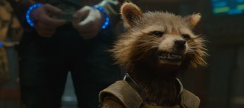 Talking Raccoon and Tree Save Smirky 'Guardians'