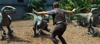 Photos: Chris Pratt is the Raptor Whisperer in 'Jurassic World'