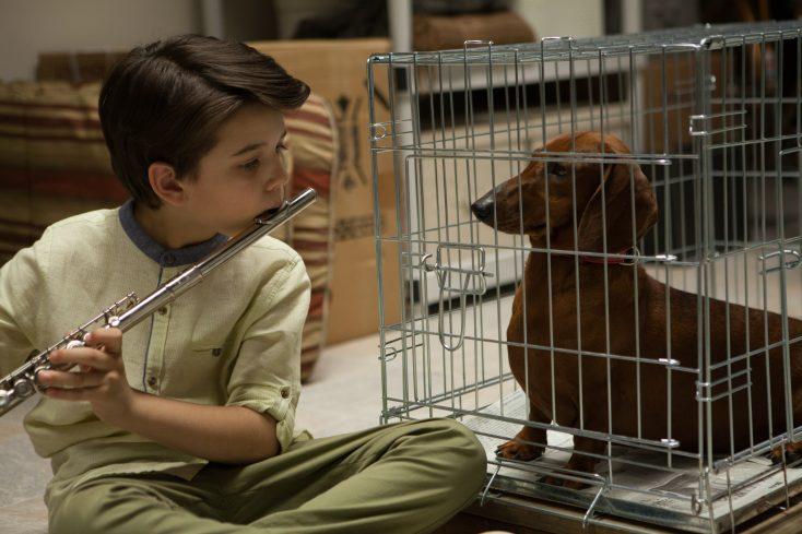 Solondz Fans Will Relish 'Wiener-Dog'