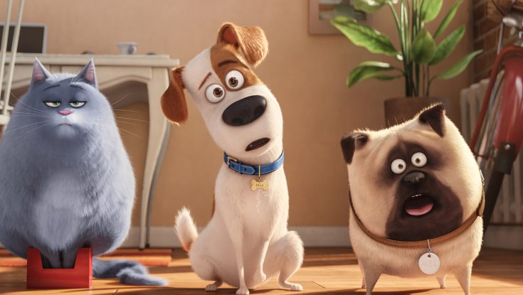 Photos: 'The Secret Life of Pets' Paws Its Way to DVD and Blu-ray