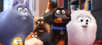 'The Secret Life of Pets' Paws Its Way to DVD and Blu-ray