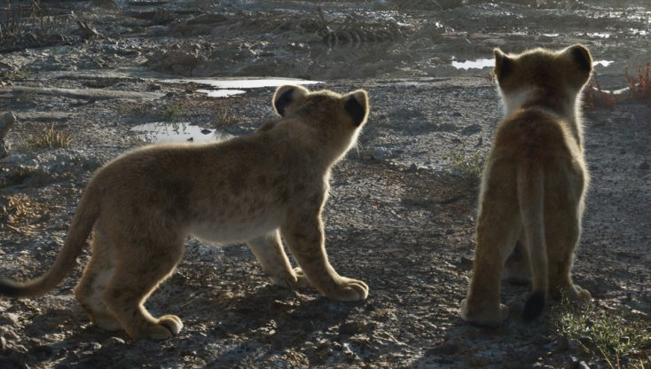 Photos: Cub Actors Roar to Life as Simba and Nala in New 'The Lion King'